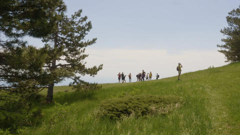Tourist group trekking on green highlands while summer trip. Traveling people Footage