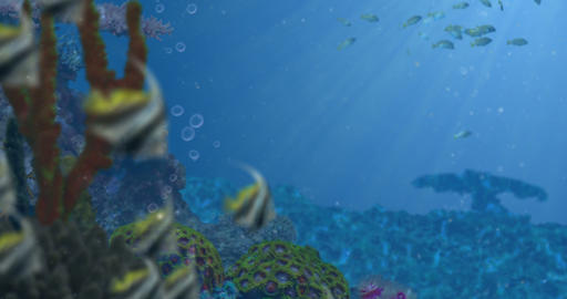 Blue Ocean Reef and Fish Animation