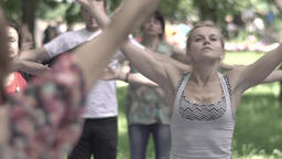 Group of people practicing yoga in the park. Slow motion Footage