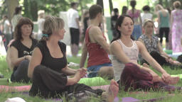 A group of people doing yoga in the Park. Slow motion Footage