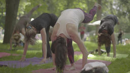 The girls do yoga in the park Stock Video Footage