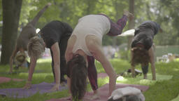 The girls do yoga in the park Footage