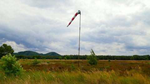 Windsock blown by the wind with overcast sky, lonely tree and green lawn. Abandoned windsock in wind Live Action