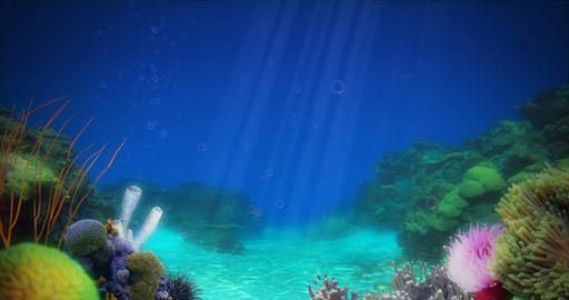 Sandy Ocean Reef Background Animation