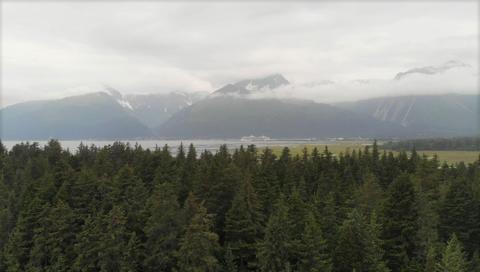 Rainy summer day in Alaska Photo