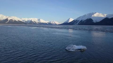 Winter In Alaska 2019 1