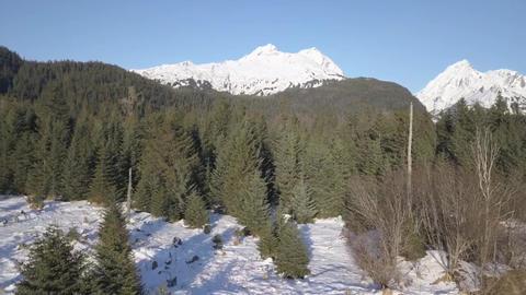 Winter Views Of Alaska 0