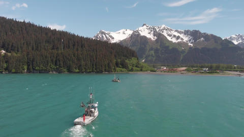 Amazing work scenery for commercial salmon fishermen Live Action