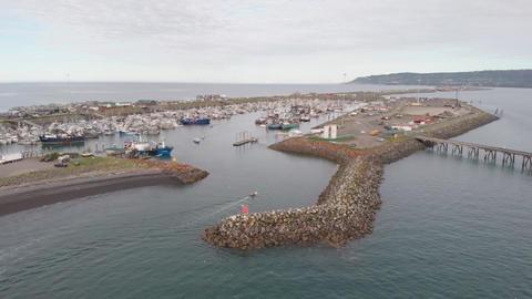 Homer Alaska harbor Live Action