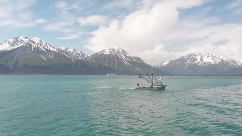 Salmon fishing boats Live Action