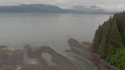 Mouth of Spring Creek in Alaska Live Action