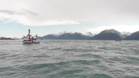 Salmon fishing boats in Alaska Live Action