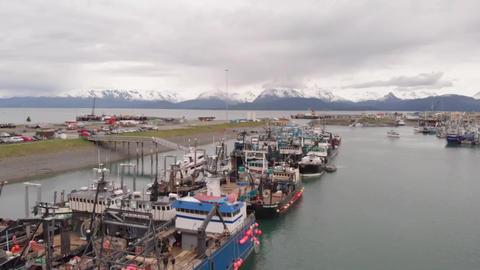 Bering sea crabbers in Homer Alaska Live Action