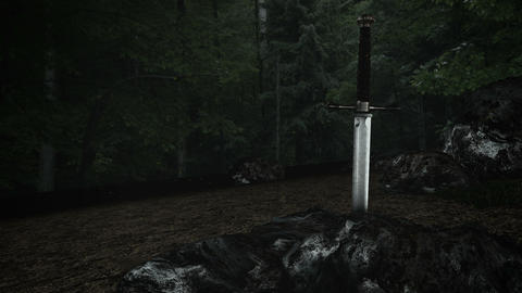 The Magical Excalibur Sword Inside a Rock in a Forest Live Action