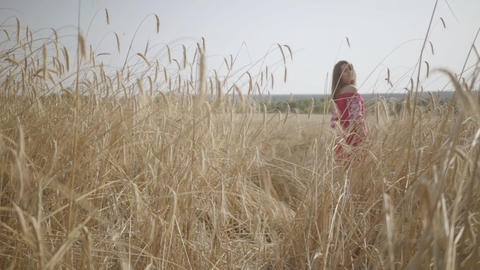 Carefree young woman enjoying nature and sunlight in wheat field at incredible Footage