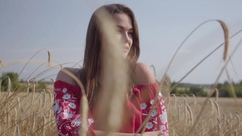 Portrait tender charming young woman enjoying nature and sunlight in wheat field Footage