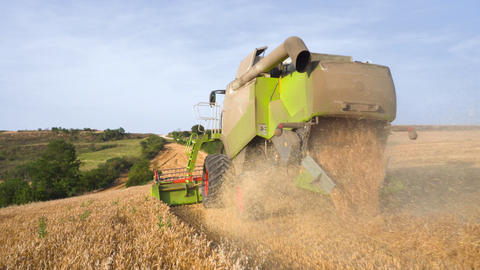 Impressive close up, Following a combine harvester, harvesting wheat field Live Action