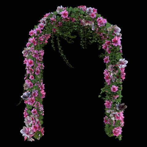 Wedding arch Animation