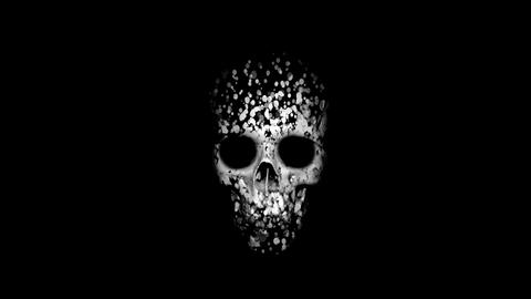 skull reveal from particles Animation
