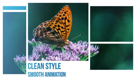 Photo Media Slideshow After Effects Template