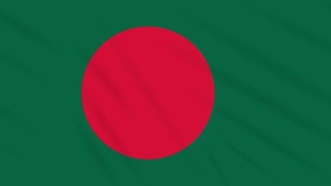 Bangladesh flag waving cloth background, loop Animation