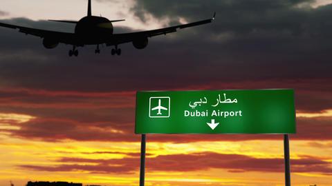Plane landing in Dubai Animation