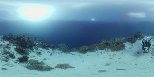 360 vr diver swims on a coral reef VR 360° Video