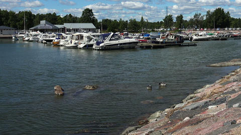 The harbor, the port in Helsinki Footage