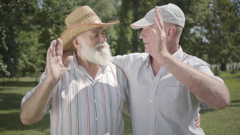 Two positive old men looking in the camera waving hands in the park. Leisure Footage