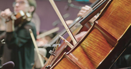 Musician playing Cello during a classical music rehearsal before a concert Live Action