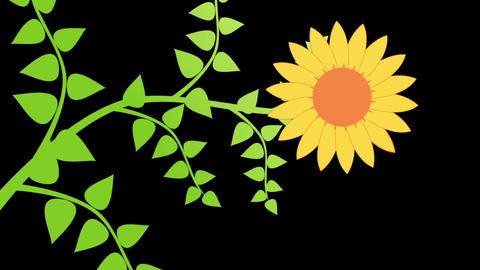 Growing Plant 4 After Effects Template