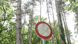 4K No Entry Sign in Pine Forest 1 Footage