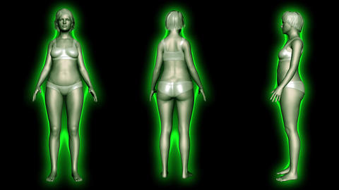 4K Simulation of a Fat Woman Loosing Body Weight and BMI Index v2 4 Animation