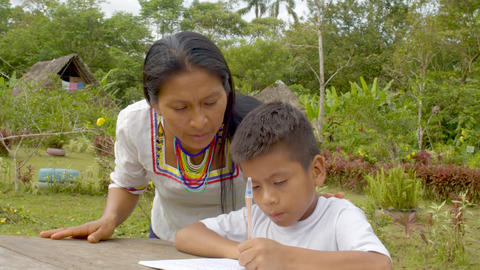 Young Indigenous Woman Helps His Son With His Homework In Ecuador Live Action