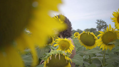 Lovely curly woman walking on the sunflower field. Bright yellow color. Freedom Footage