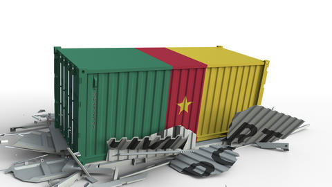 Cargo container with flag of Cameroon breaks container with IMPORT text Live Action