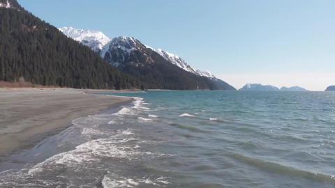 The Alaska Life 1