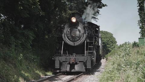 Vintage Steam Engine and Antique Passenger Cars Live Action