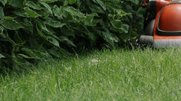 Lawn Mower Cutting The Grass