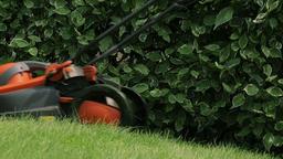 Lawn Mower Cutting The Grass 0