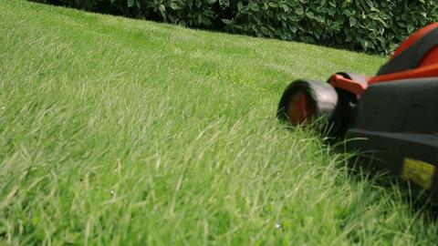 Lawn Mower Cutting The Grass 2