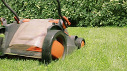 Lawn mower cutting the grass Archivo