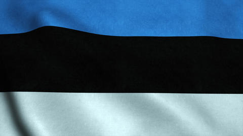 Realistic Ultra-HD flag of the Estonia waving in the wind. Seamless loop with hi Animation