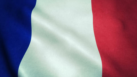 Realistic Ultra-HD flag of the France waving in the wind. Seamless loop with hig Animation