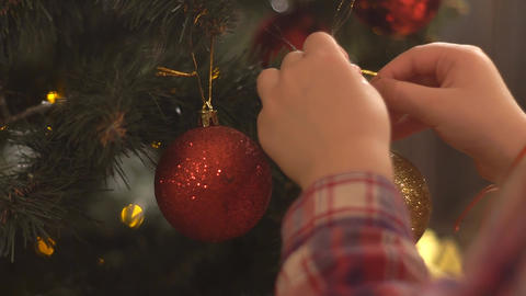 Hand Decorating Christmas Tree With Red Ball. Hanging Decorations On Tree Live Action