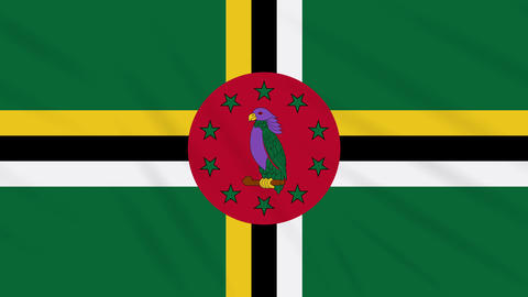 Dominica flag waving cloth background, loop Animation