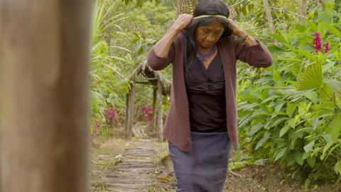 Indigenous Old Woman Carrying A Basket Of Exotic Fruits Live Action