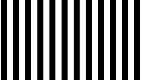 Black and white lines pattern seamless background loop Animation