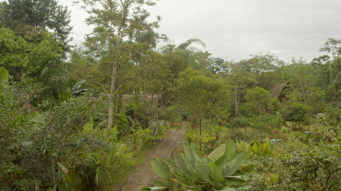 Panoramic View Of An Indigenous Community In The Amazon Rainforest In Ecuador Footage