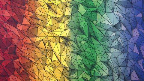 Rainbow short wireframe GIF